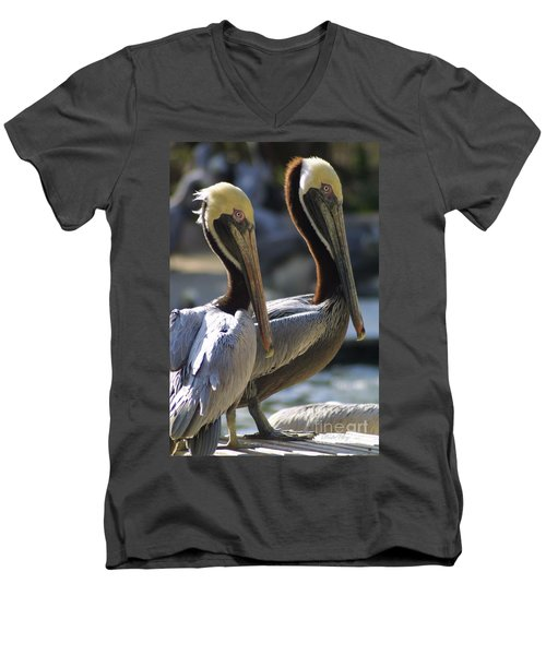 Pelican Duo Men's V-Neck T-Shirt by Dodie Ulery