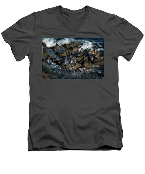 Pelican Landing Men's V-Neck T-Shirt by James David Phenicie