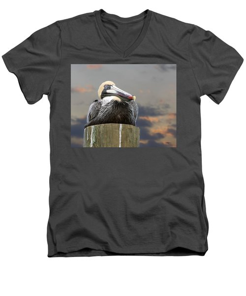 Pelican Perch Men's V-Neck T-Shirt by Betty Denise