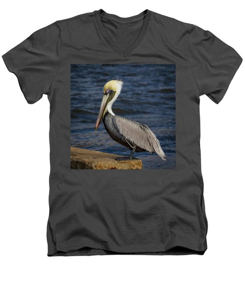 Men's V-Neck T-Shirt featuring the photograph Pelican Profile 2 by Jean Noren