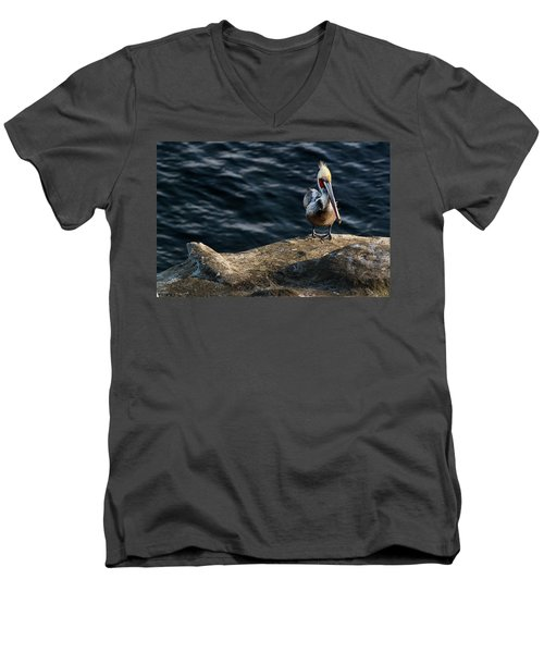 Pelican1 Men's V-Neck T-Shirt by James David Phenicie