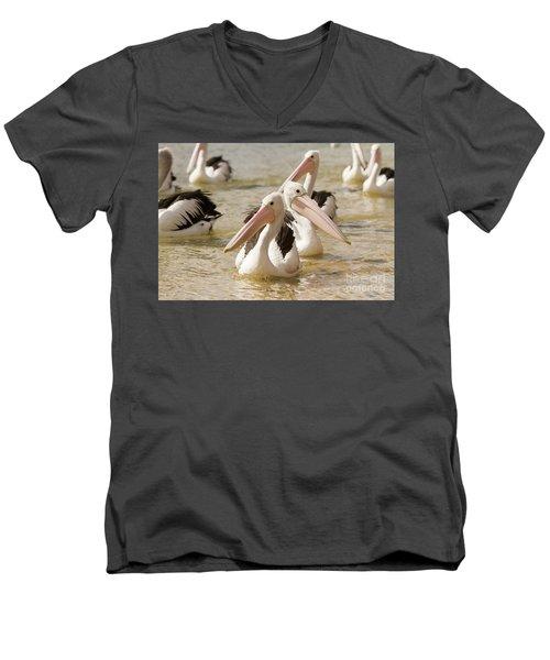 Pelicans Men's V-Neck T-Shirt by Craig Dingle