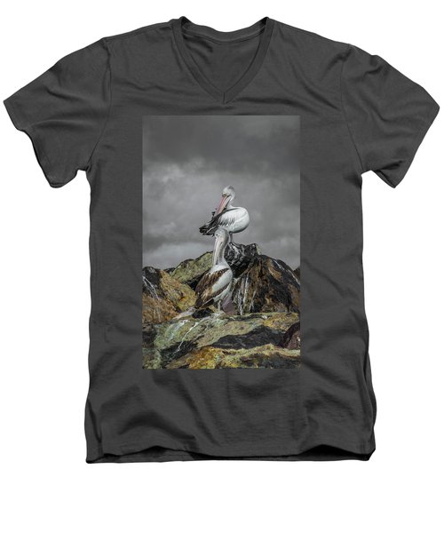 Pelicans On Rocks Men's V-Neck T-Shirt