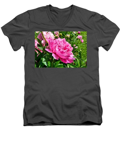 Peonies In Spring Men's V-Neck T-Shirt