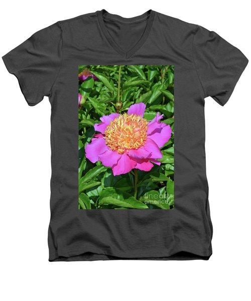 Peony 10 Men's V-Neck T-Shirt