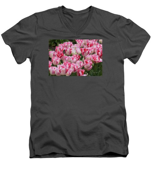 Peppermint Tulip Field IIi Men's V-Neck T-Shirt