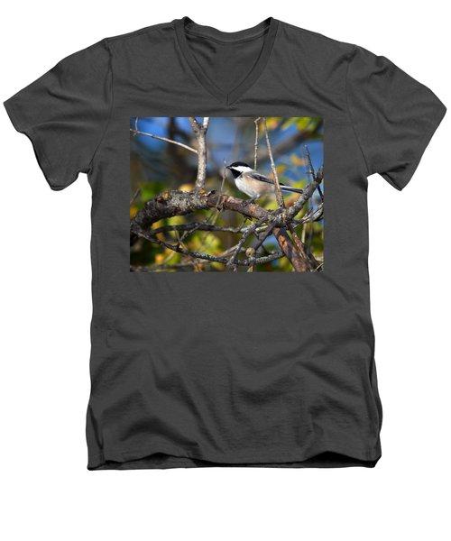 Perched Black-capped Chickadee Men's V-Neck T-Shirt