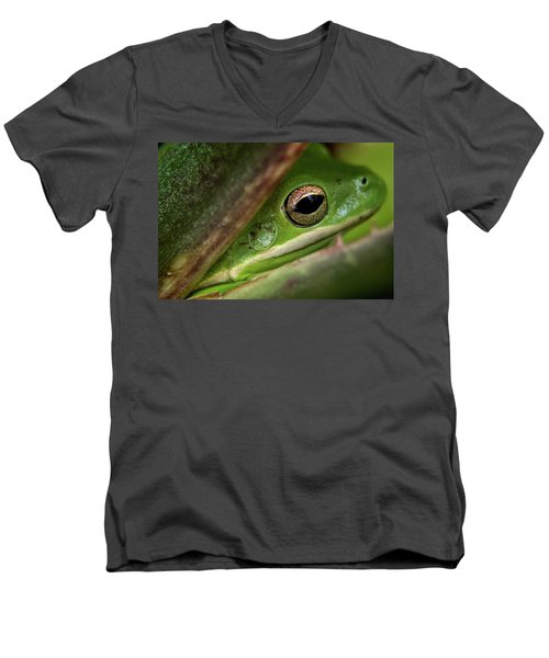 Frogy Eye Men's V-Neck T-Shirt