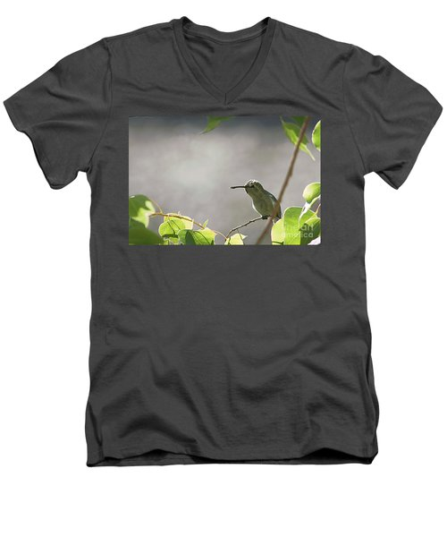 Men's V-Neck T-Shirt featuring the photograph Perched Hummer by Anne Rodkin