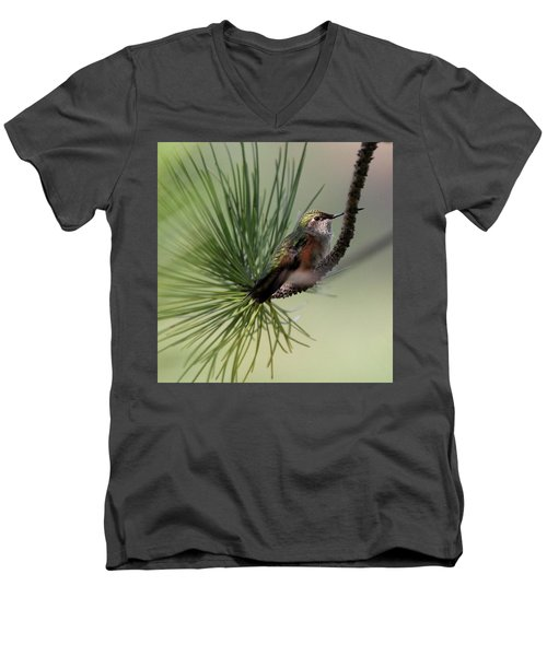 Perched In A Pine Men's V-Neck T-Shirt