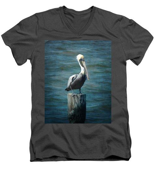 Perched Pelican Men's V-Neck T-Shirt