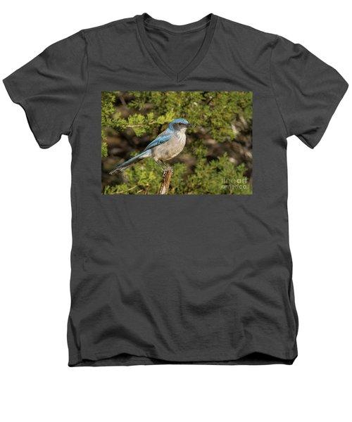 Perched Scrub Jay Men's V-Neck T-Shirt
