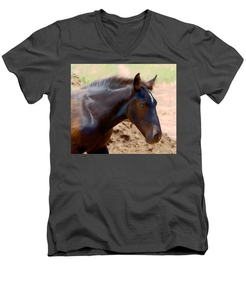 Percheron Colt - Digitalart Men's V-Neck T-Shirt