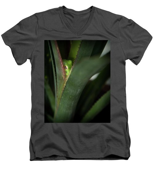 Perching With Comfort Men's V-Neck T-Shirt by Denis Lemay