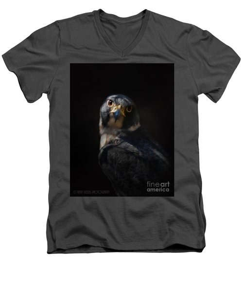 Peregrine Falcon Men's V-Neck T-Shirt by Kathy Russell