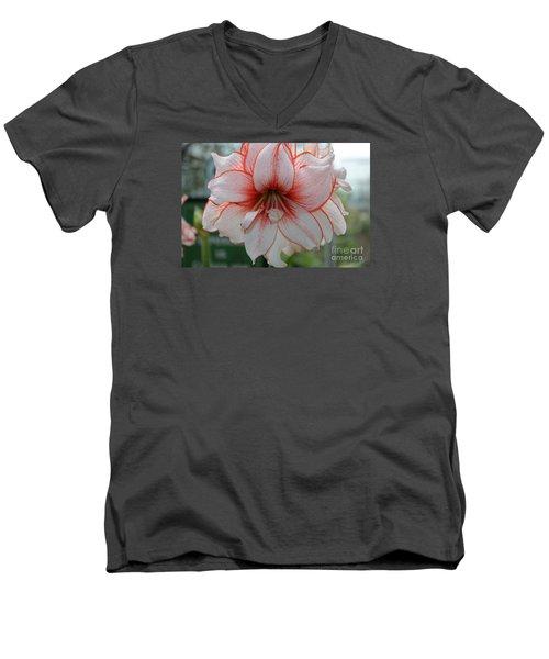 Perfect Amarylis Men's V-Neck T-Shirt by DejaVu Designs