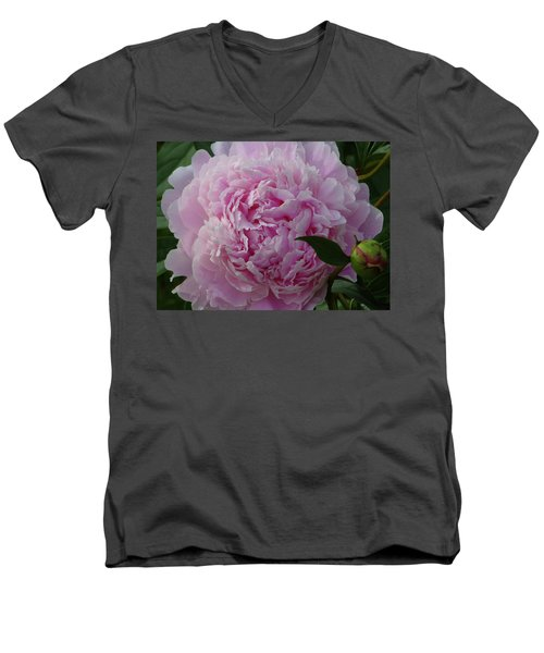 Perfection In Pink Men's V-Neck T-Shirt