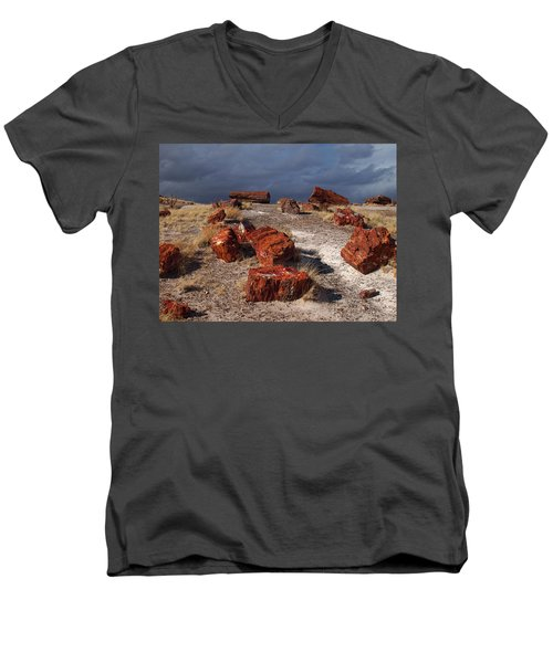 Men's V-Neck T-Shirt featuring the photograph Petrified Forest National Park by James Peterson