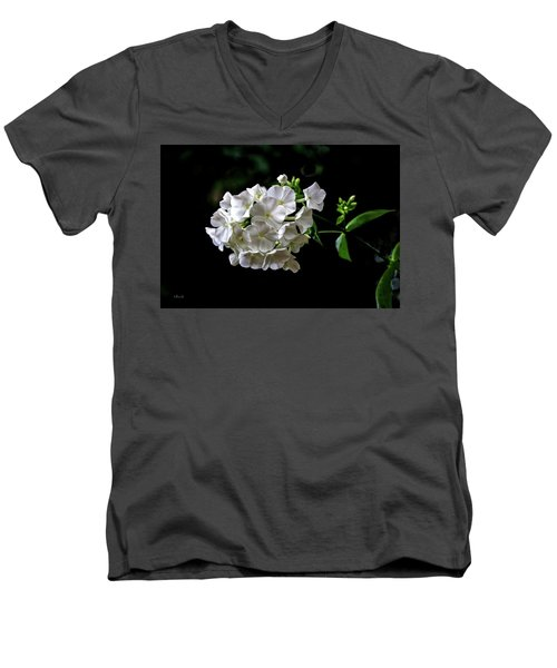 Phlox Flowers Men's V-Neck T-Shirt