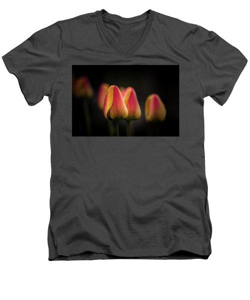 Phocus Pocus Men's V-Neck T-Shirt