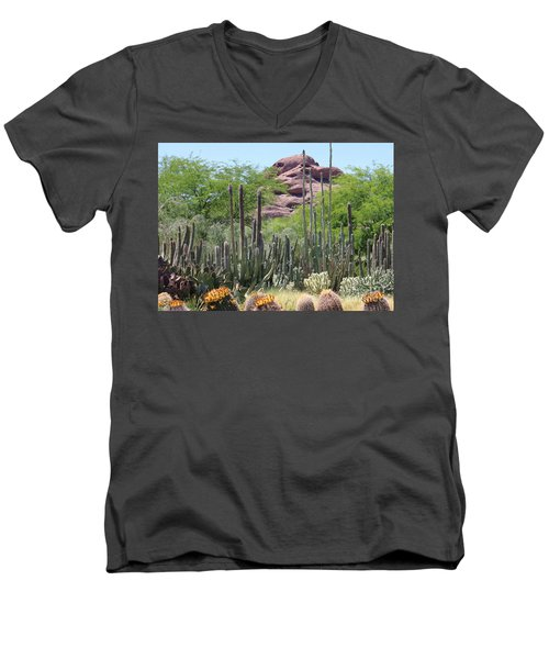 Phoenix Botanical Garden Men's V-Neck T-Shirt