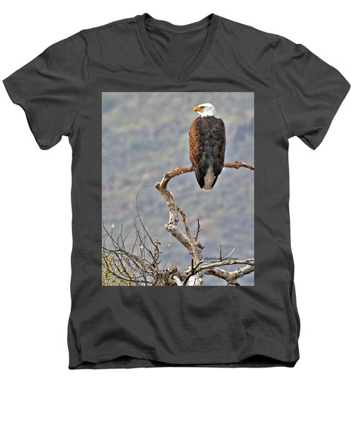 Phoenix Eagle Men's V-Neck T-Shirt