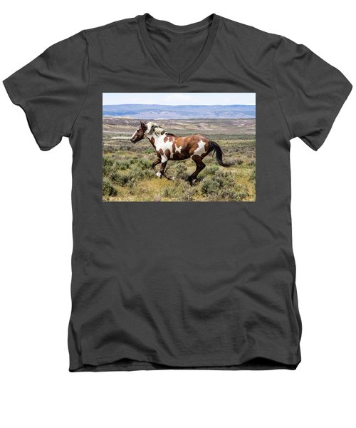 Picasso - Free As The Wind Men's V-Neck T-Shirt by Nadja Rider