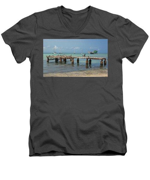 Pier For Birds Men's V-Neck T-Shirt