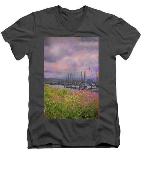 Pillar Point Harbor Men's V-Neck T-Shirt