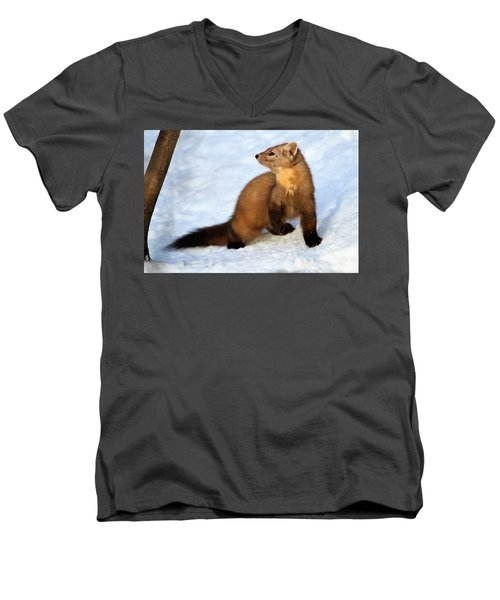 Pine Martin Men's V-Neck T-Shirt