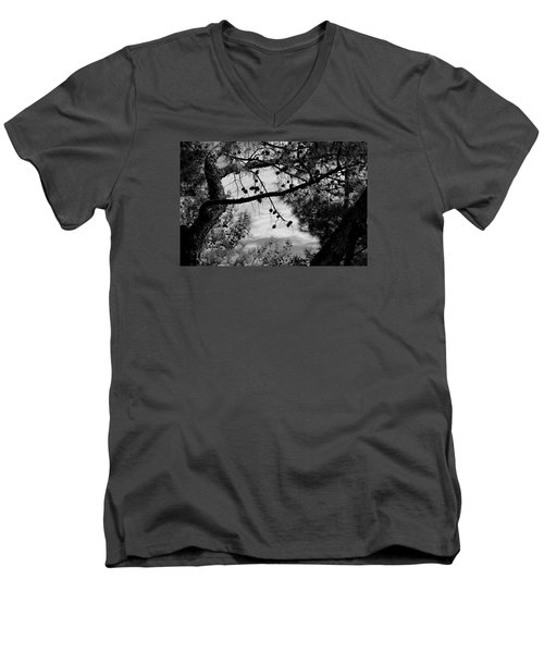 Pine View Men's V-Neck T-Shirt