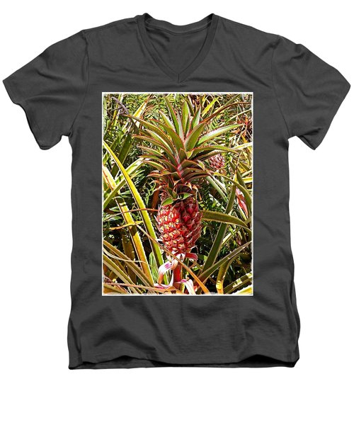 Pineapple  Men's V-Neck T-Shirt