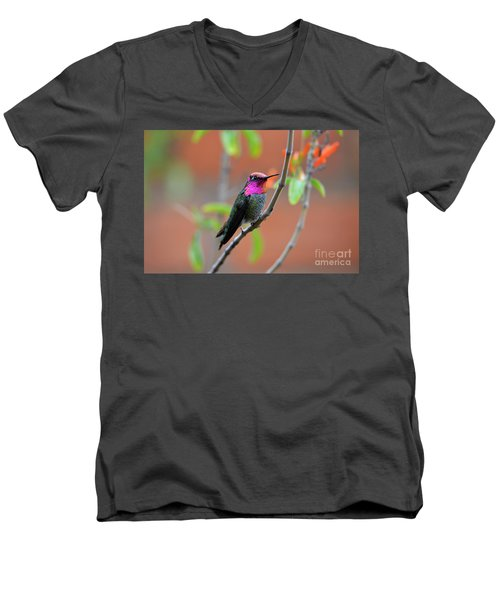 Pink And Gold Anna's Hummingbird Men's V-Neck T-Shirt