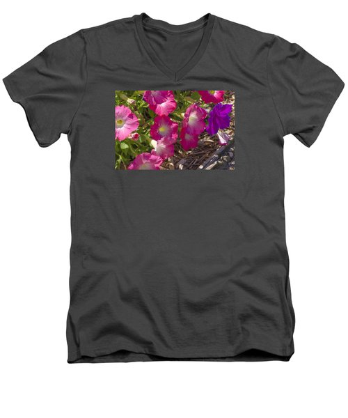 Pink And Purple Petunias Men's V-Neck T-Shirt