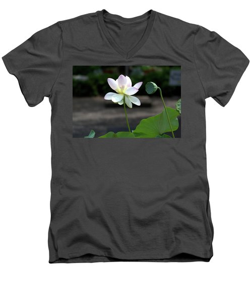 Pink And White Water Lily With Green Pod Men's V-Neck T-Shirt