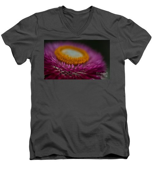 Pink And Yellow Strawflower Close-up Men's V-Neck T-Shirt