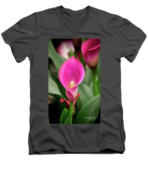 Pink Calla Men's V-Neck T-Shirt
