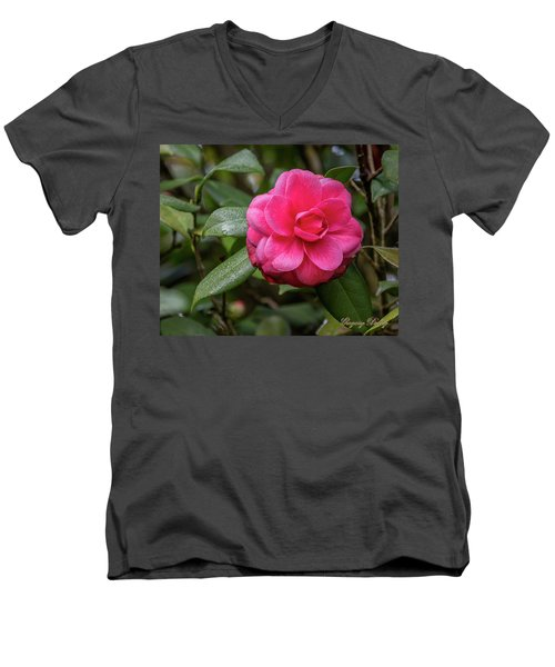 Men's V-Neck T-Shirt featuring the photograph Pink Camelia 02 by Gregory Daley  PPSA