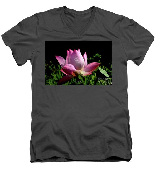 Pink Lotus  Men's V-Neck T-Shirt by Jeannie Rhode