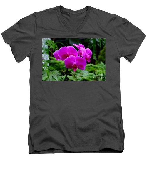 Pink Orchids Men's V-Neck T-Shirt by Mini Arora