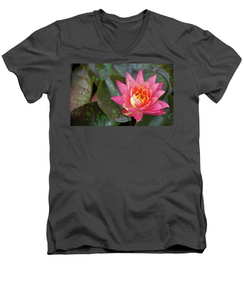 Pink Water Lily Beauty Men's V-Neck T-Shirt