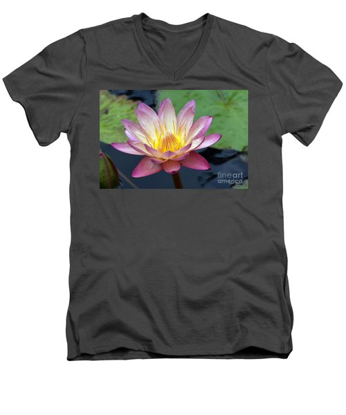 Pink Water Lily Men's V-Neck T-Shirt by Teresa Zieba