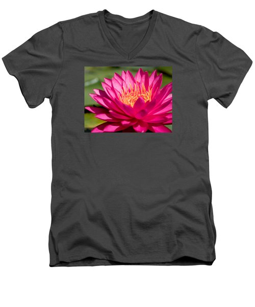 Pink Waterlily Men's V-Neck T-Shirt