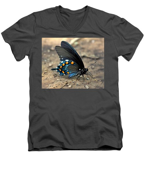 Pipevine Swallowtail Close-up Men's V-Neck T-Shirt