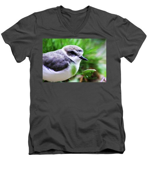 Men's V-Neck T-Shirt featuring the photograph Piping Plover by Anthony Jones