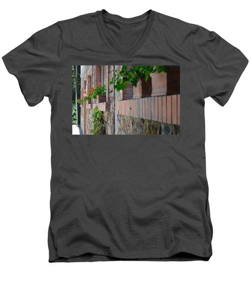 Plants In Windows Men's V-Neck T-Shirt