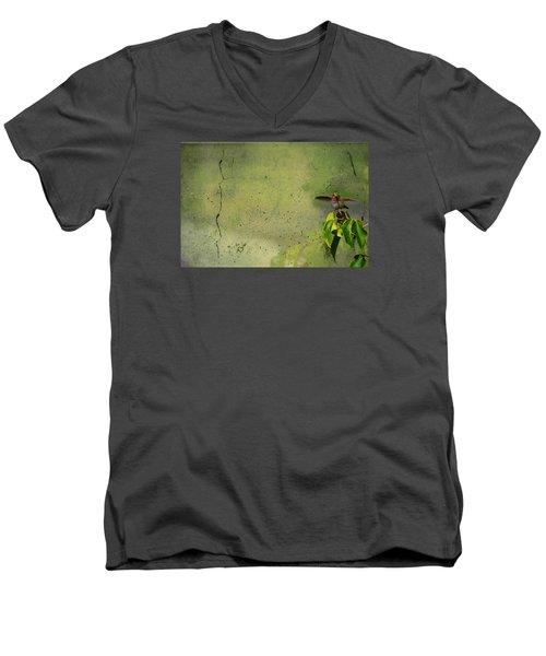 Plate 087 - Hummingbird Grunge Series Men's V-Neck T-Shirt