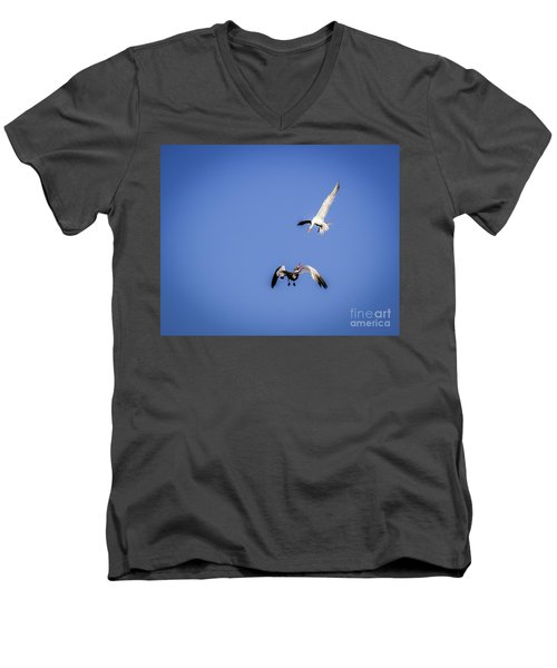 Playing Terns Men's V-Neck T-Shirt