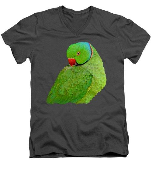 Plucking My Feathers Men's V-Neck T-Shirt by Pamela Walton