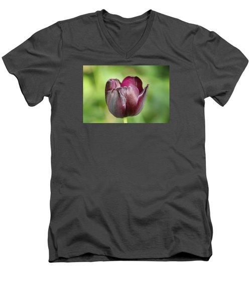 Plum Tulip Men's V-Neck T-Shirt